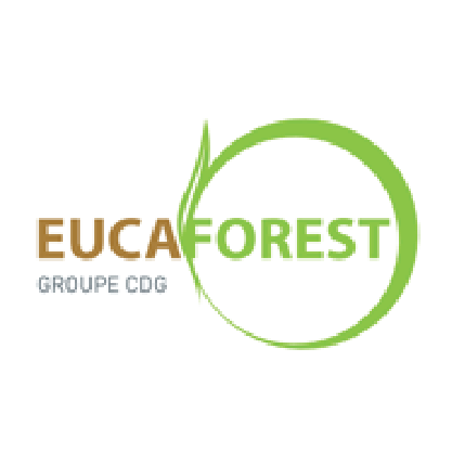 Eucaforest 100-01