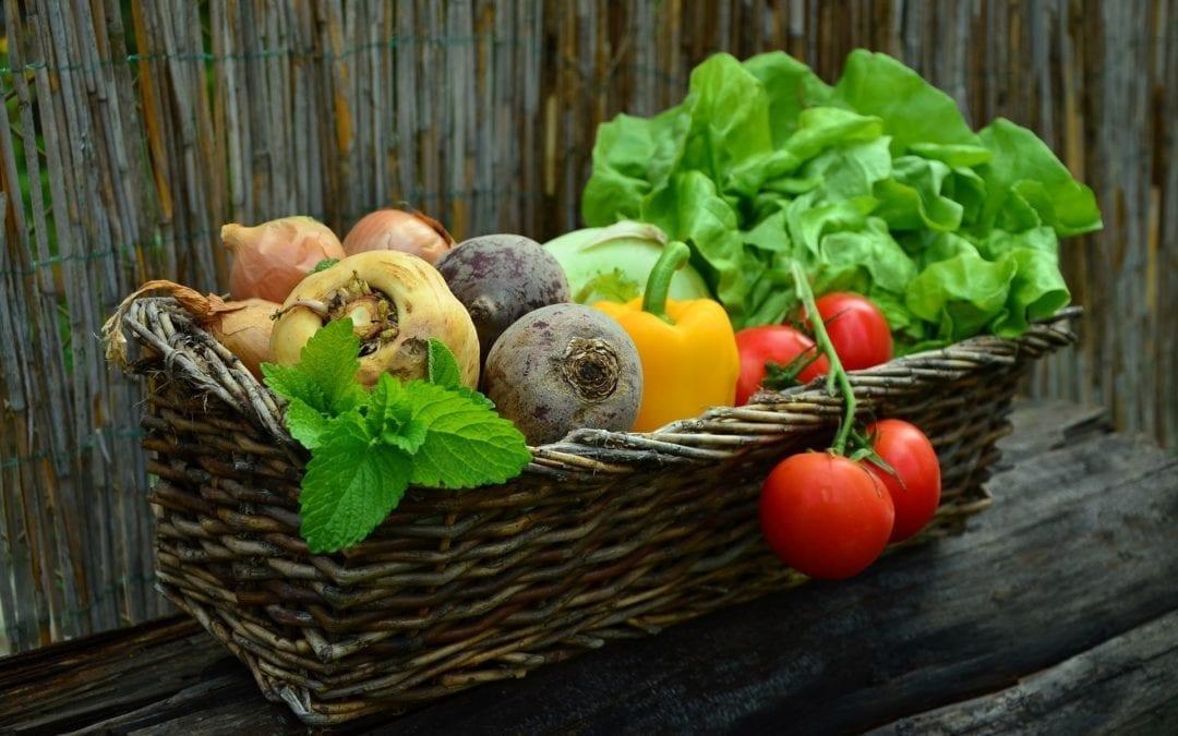 Point sur l'économie et la qualité de nos fruits et légumes