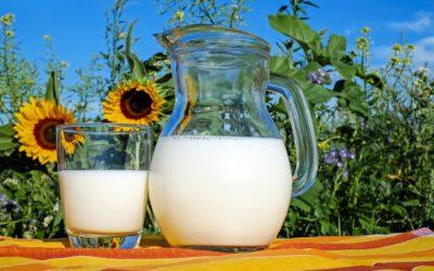Marché du lait: un an après le boycott, la guerre bat son plein