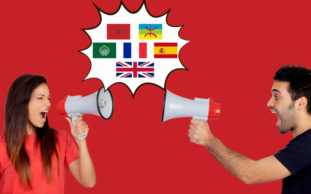 langues contexte utilisation internautes marocains